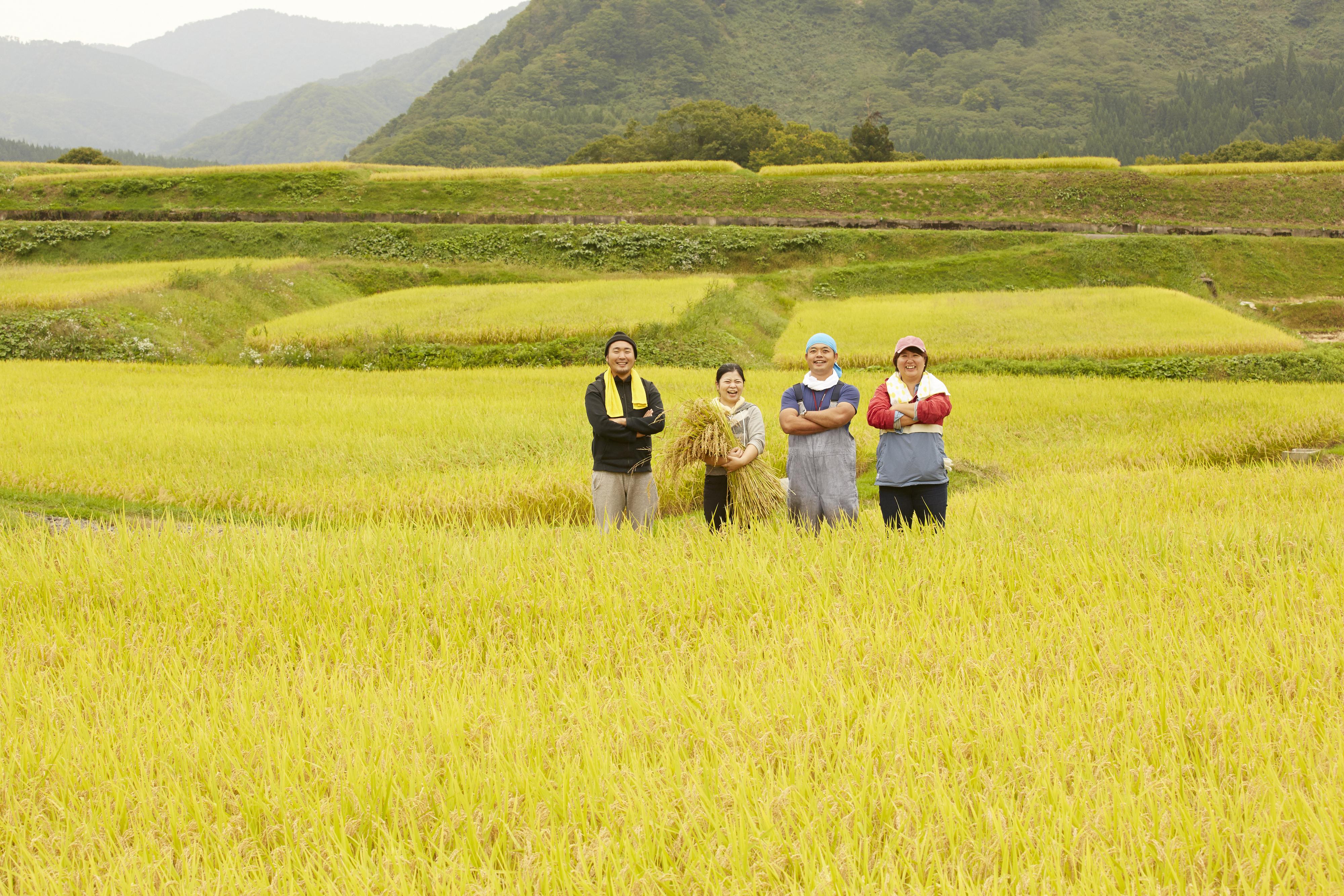 JA(農業協同組合)の役割と融資の使い方