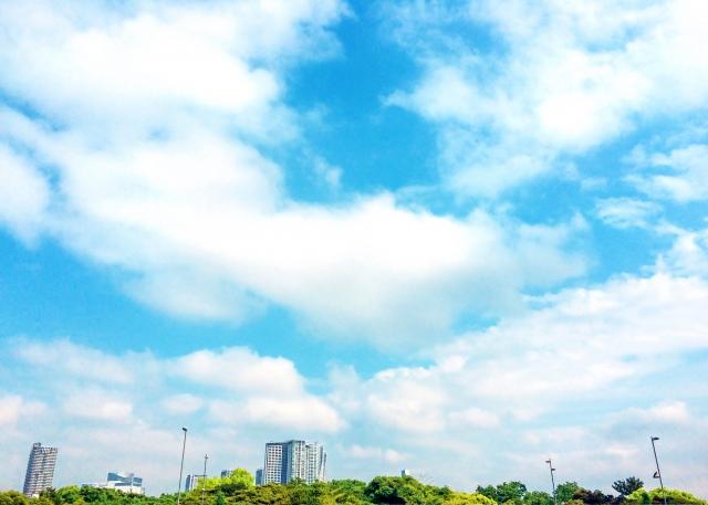 都会の緑と青空