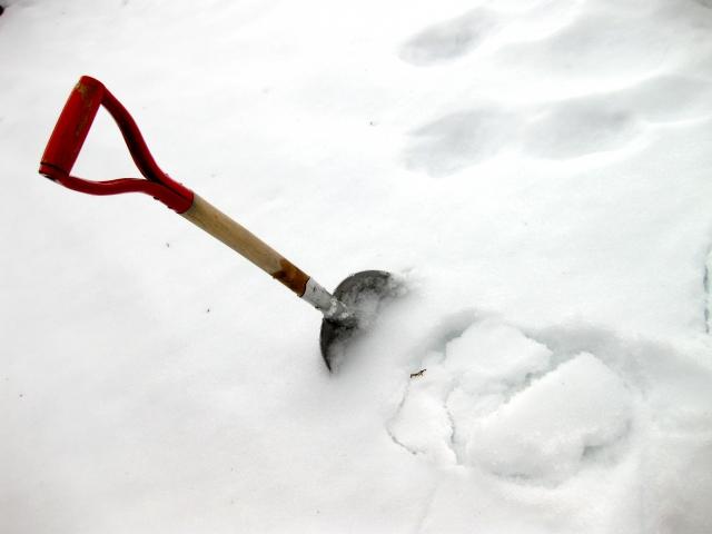 真冬に需要がある季節労働
