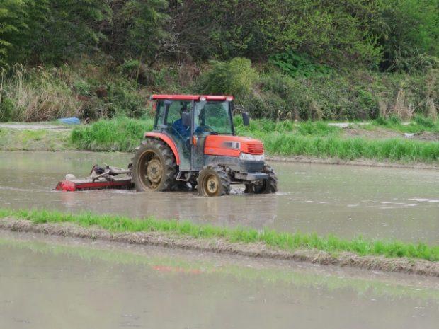 農業系の季節労働