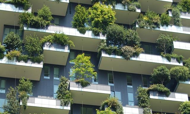 壁面緑化・屋上緑化の助成金取得