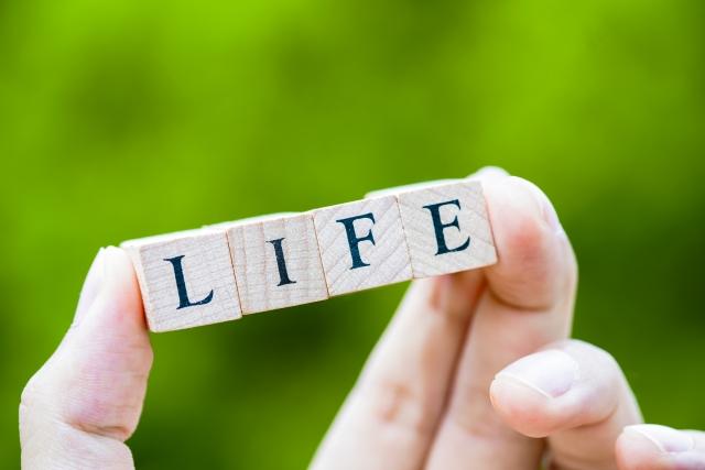 生命保険を担保に融資してもらう件を考える