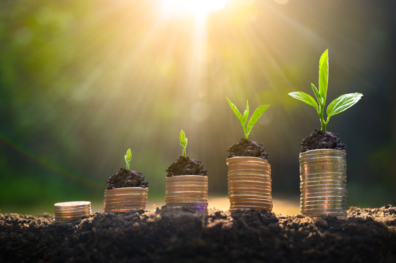 コインの上で植物が育っており、ビジネスの成長を示している