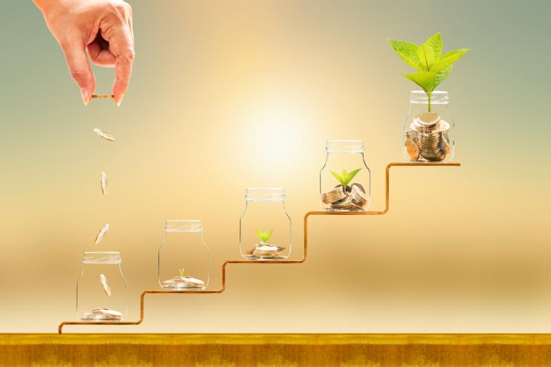 5つのボトルの中にコインがあり、その上で植物が育っている様子