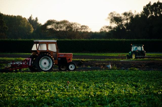 フリーランスの農業経営者は稼げる?働き方や収入の目安などを紹介!
